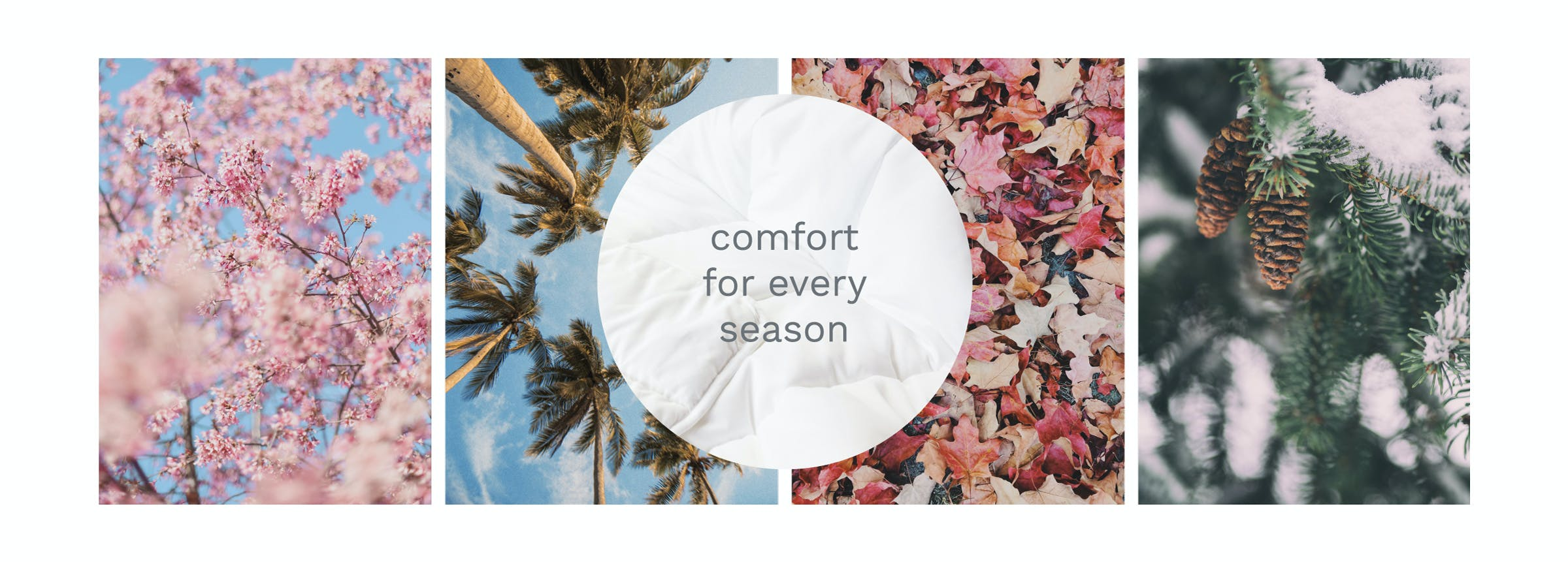 collage of trees flowers pinecones content a comforter for all seasons